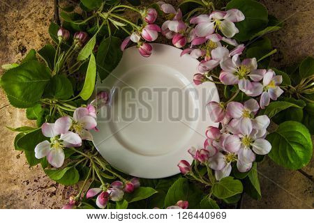 Empty white plate with spring blossom branches of apple tree top view on the wooden background