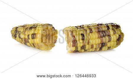 boiled white corn or glutinous corn on white background