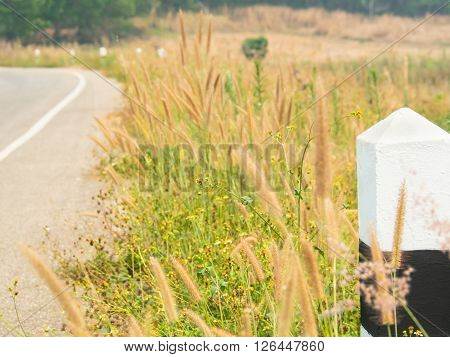 Guidepost beside country road filled with shady trees and meadows in northern of Thailand