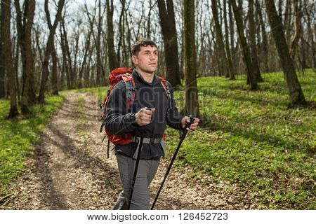 Hiker - man hiking in forest. Male hiker looking to the side walking in forest. Caucasian male model outdoors in nature.