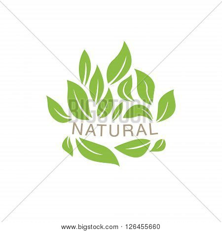 Random Placed Leaves Surrounding Text Organic Product Logo Cool Flat Vector Design Template On White Backgeound