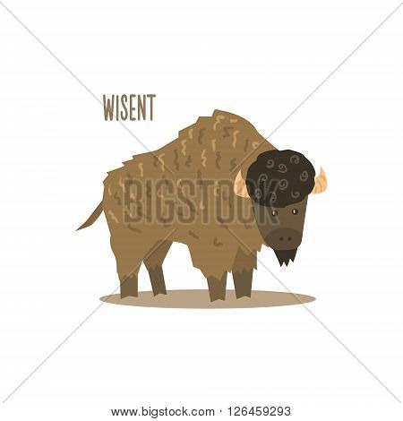 Wisent Drawing For Arctic Animals Collection Of Flat Vector Illustration In Creative Style On White Background