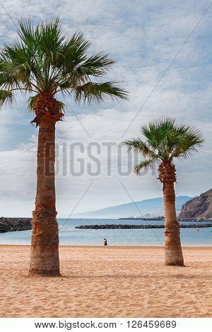 view of beach Las Teresitas at summer day, Tenerife island, Canarias Spain