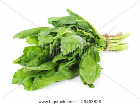 Bunch of green watercress isolated close up