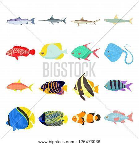 Fish icons set. Fish icons. Fish icons art. Fish icons web. Fish icons new. Fish icons www. Fish icons app. Fish icons big. Fish set. Fish set art. Fish set web. Fish set new. Fish set www. Fish set app. Fish set big
