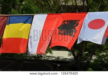 The flags of Chad Monaco Albania and Japan