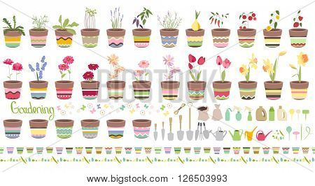 Gardening tools for plants isolated on white. Spring flowers and summer vegetables in pots. Objects for your design, advertisement, posters.