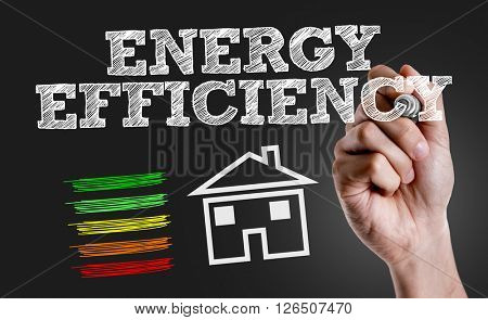 Hand writing the text: Energy Efficiency