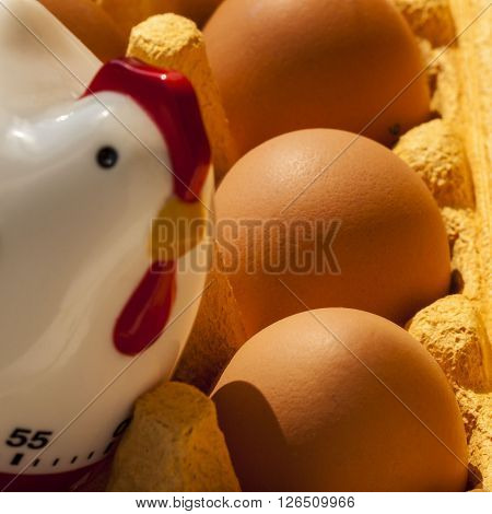 Cardboard egg box with  brown eggs and kitchen  timer