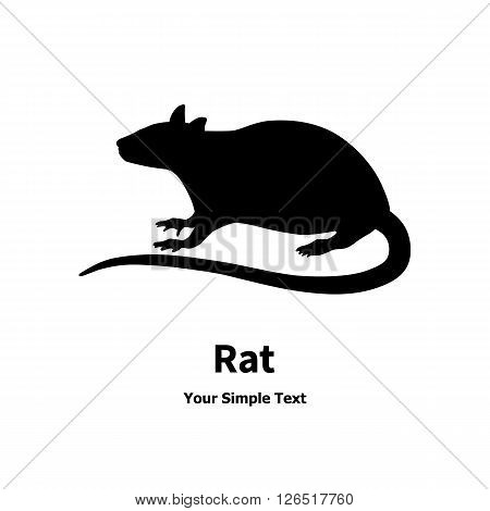 Vector image of a black rat. Isolated on white background.