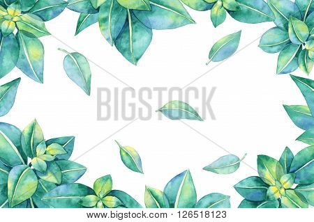 Hand drawn watercolor illustration. Floral elements for decoration. Rectangular frame with green leaves.
