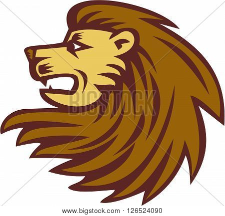 Illustration of a lion big cat head with flowing mane viewed from the side set on isolated white background done in retro woodcut style.