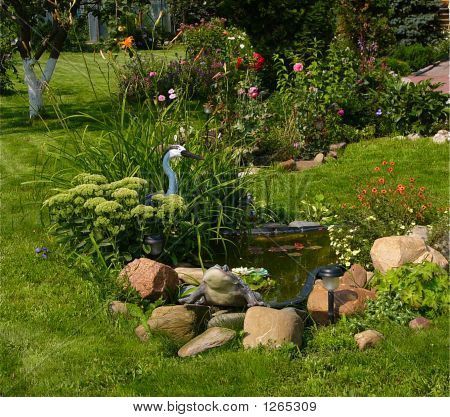 Charm Of Small Pond