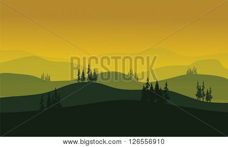 Vector Morning at foggy Mountains aith spruce tress