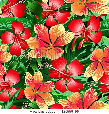 Tropical orange and red variegated hibiscus flowers seamless pattern .