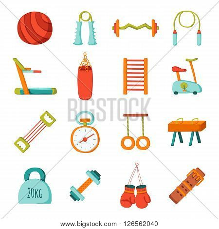 Set of cartoon gym icons. Sport healthy life concept. Fitness equipment design. Sport gym cartoon objects. Indoor gym equipment. Fitness activity concept. Cartoon fitness club equipment