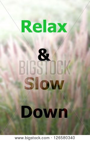 Inspiraional quote of relax and slow down on field of grass