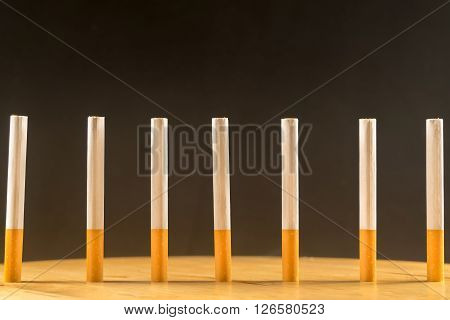 Row of cigarettes standing. A close up look