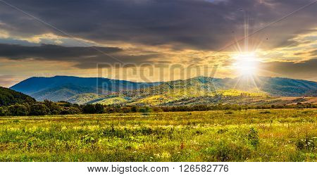 summer rural landscape. meadow near the village on mountain hillside in evening light