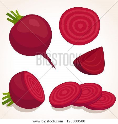Vector beets isolated on background. Red beetroot whole cut sliced. Set of fresh beets in different forms.