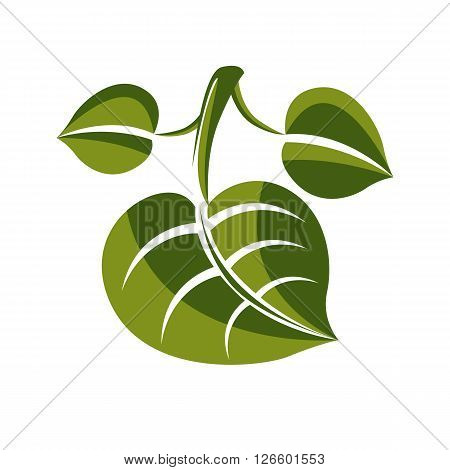 Simple green deciduous vector tree leaf stylized nature element. Ecology symbol can be used in graphic design.