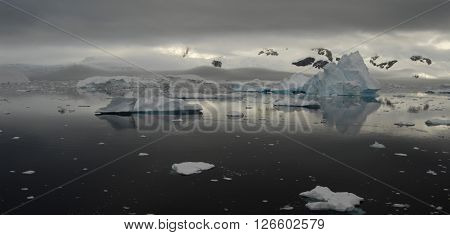Sunset in Antarctica and big Iceberg on the backgrownd