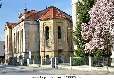 Bytca Slovakia -Desolate jewish synagogue in sunshine in spring. Back view from the street.