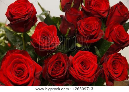 Red roses in the bouquet. Background of red roses. A festive bouquet of flowers with lots of roses. Romantic gift for loved ones. ** Note: Visible grain at 100%, best at smaller sizes