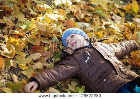 Portrait Of A Cheerful Little Boy Wallow In Fall Foliage.