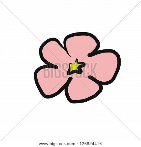 Pink cherry blossom flower use program drawing illustration vector isolated on white background