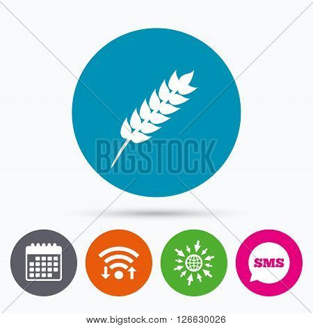 Wifi, Sms and calendar icons. Gluten free sign icon. No gluten symbol. Go to web globe.