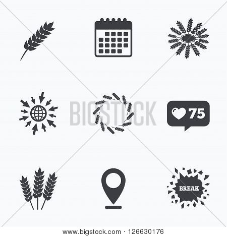 Calendar, like counter and go to web icons. Agricultural icons. Gluten free or No gluten signs. Wreath of Wheat corn symbol. Location pointer.