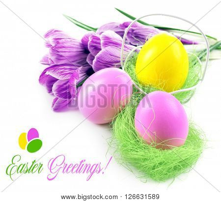 Easter greeting card. Multicoloured eggs and crocus isolated on white