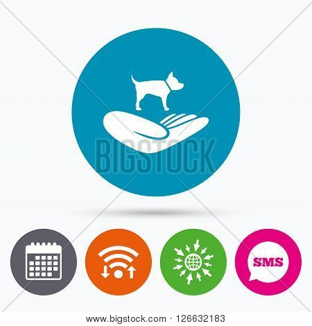 Wifi, Sms and calendar icons. Shelter pets sign icon. Hand holds dog symbol. Animal protection. Go to web globe.