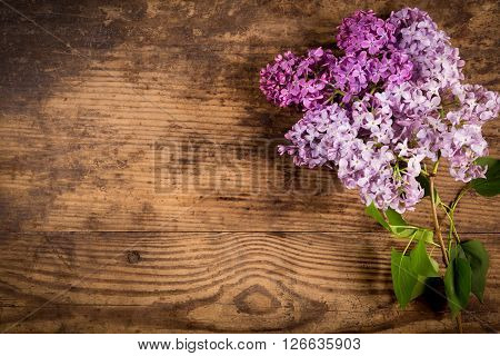 Bunch of lilac flowers on old wood table with empty space for text