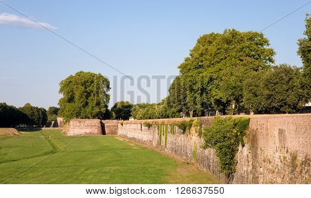 Medieval wall surrounding the Tuscan village of Lucca Italy. The wall was built between 1545 and 1550. It currently serves as a pedestrian walkway and tourist attraction. Copy space in sky if needed.
