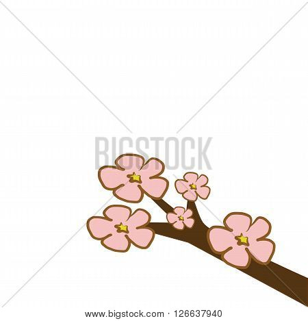 Cherry Blossom flower branch tree with pink and red illustration vector download with copy space isolated on white background