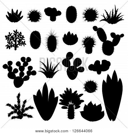 Silhouettes of cacti and succulents. Silhouettes indoor plants isolated on white background. Big set of silhouettes of indoor plants. Vector illustration.