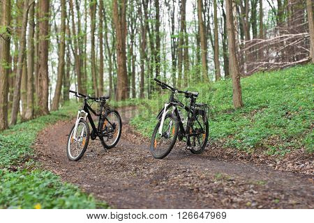 two mountain bikes in the spring green forest on the footpath