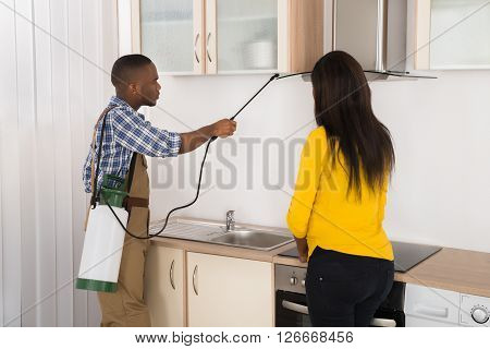 Male Worker Spraying Insecticide