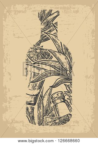 Bottle of tequila with glass, cactus, salt and lime. Color hand drawn sketch on vintage beige background. Vector engraved illustration