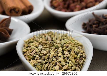 Fennel Seeds In White Spoon