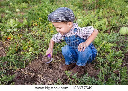 Smiling little boy digging in vegetables garden