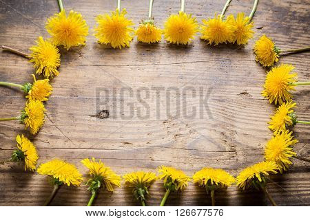 Arrangement of yellow dandelions as frame on wooden table
