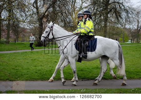 LONDON UK - APRIL 21 2016: Mounted police women riding in Hyde Park. Police on horseback patrolling in one of London's Royal Parks wearing helmets on white horses