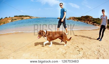 family with dog walking on the sunny beach at the sunrise. Focus on the dog.  Area Chania city, Crete, Greece.