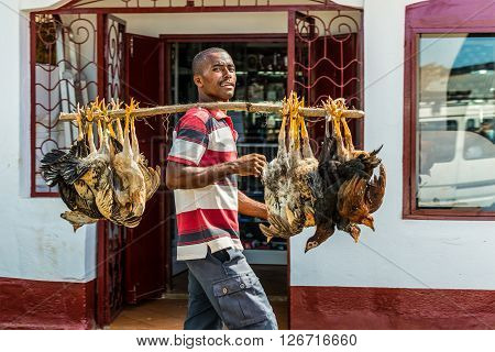 Hell Ville Madagascar - December 19 2015: Malagasy trader carries chickens to the market in Hell Ville a town at the Nosy Be island North of Madagascar.