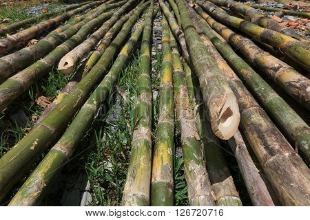 Pile Of Bamboo Stick Prepare For Material Of Construction