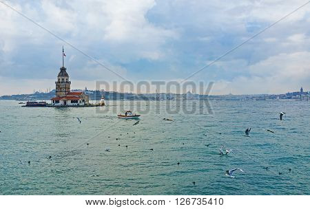 The cloudy sky over Bosphorus with the hunting gulls and the Maiden's Tower on the background Istanbul Turkey.