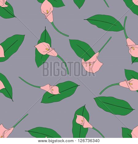 Seamless pattern with hand drawn pink callas